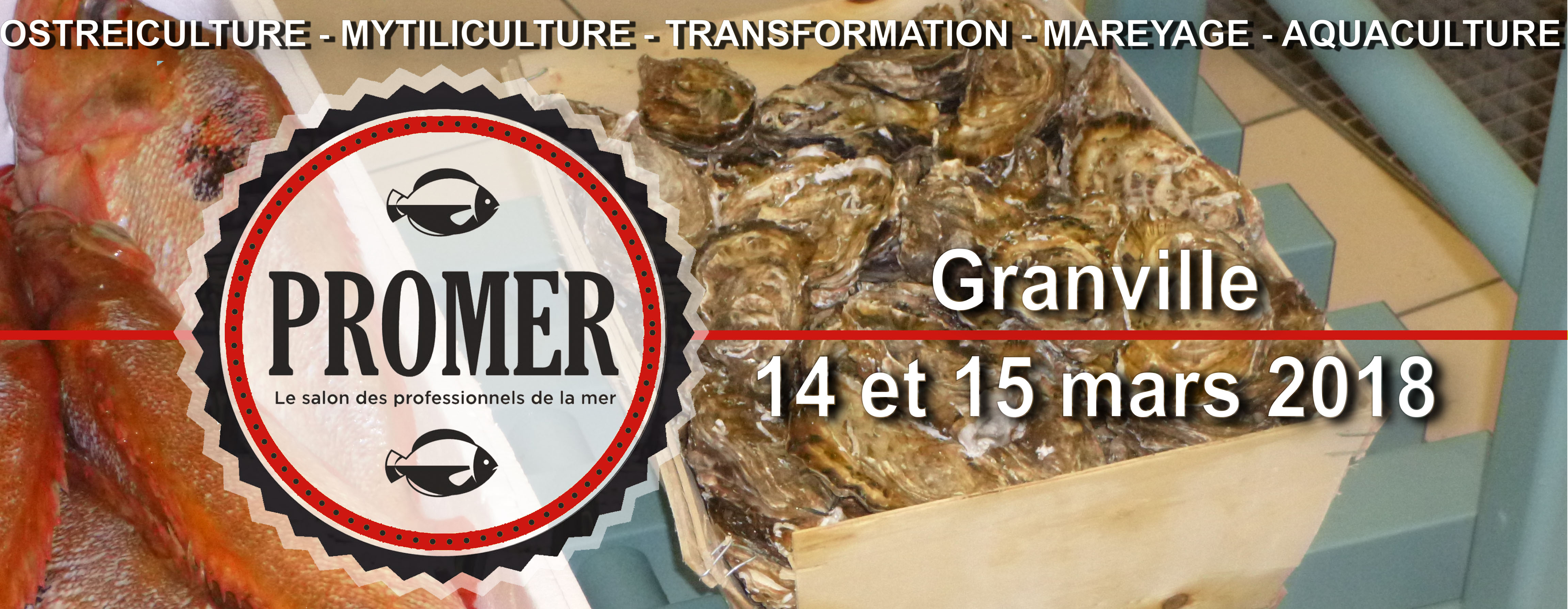 Plasnet rea actualit s for Salon mer et vigne strasbourg 2017
